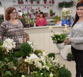 Leena-Maija Tuomi avasi ovensa Anniina Rikalan kukkakaupalle, joten Lammille saatiin shop in shop. Myös Elina ? työskentelee Kukkakulmassa. Kuva: Susanna Mattila