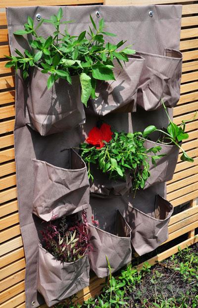 Jos et omista takapihaa tai viljelypalstaa, ota käyttöön seinäpinta. Kuva: Schetelig Oy