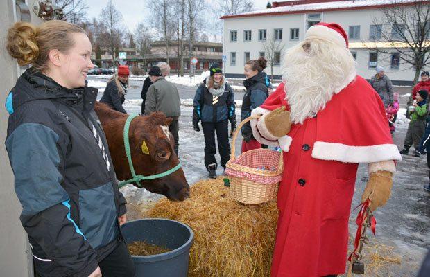 Joulupukkikin kävi tervehtimässä Lupiinia, Lammin joulunavauksen tähteä. Kuva: Susanna Mattila