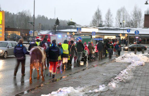 Lupiinikin liittyi perinteiseen Tonttuparaatiin. Ja pysyi matkassa, vaikka yrittikin välillä kulkea hiukan omia polkujaan. Kuva: Susanna Mattila