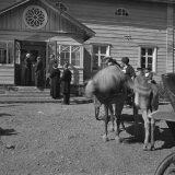 Kielletty kohuelokuva filmattiin Hauholla 80 vuotta sitten