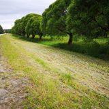 Etelä-Hämeen Keskusta: kylätiet kuntoon ja monipaikkaisuutta edistettävä