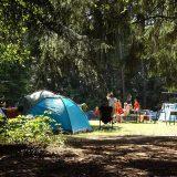 Kaupungin kesäleireistä kaksi järjestetään Kaunisniemessä