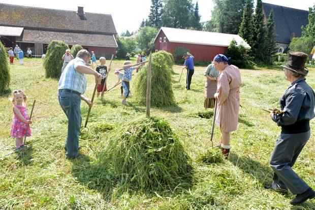 Ensi perjantaina pääsee kokeilemaan entisaikain heinäntekoa Hauhon kirkonkylässä Hauho-Seuran Heinäpäivä-tapahtumassa. Kuva Jouni Lehtonen.