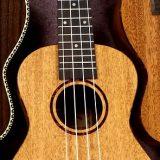 Kiinteistöjohtajalta lupa Peltolehdon käyttöön ukulelen soittoa varten